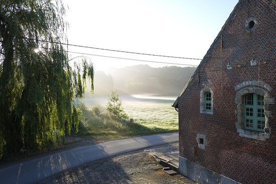 B&B 't Blauwe Schaap: morning view from the window of our room