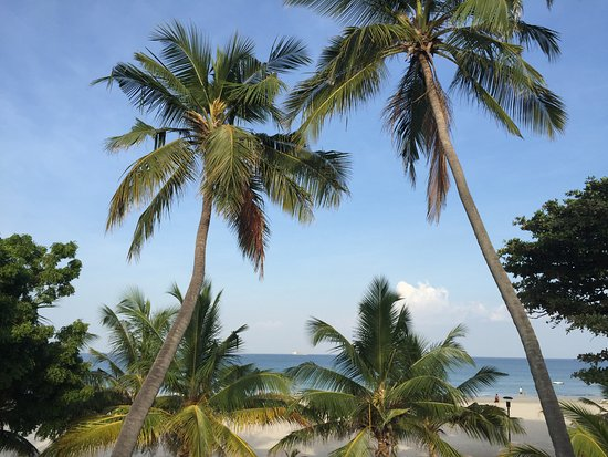 Traverse Lanka Tours: Trincomalee beach