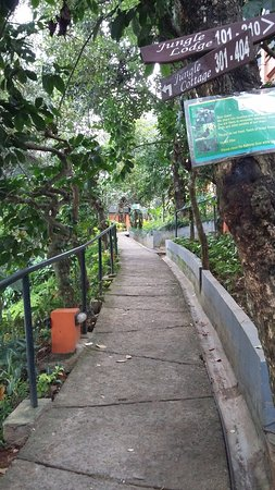 ABAD Green Forest Resort: Going to the rooms