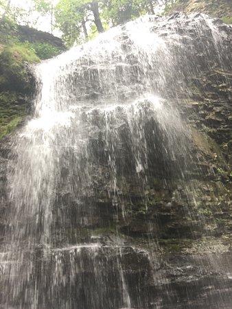 写真Waterfalls of Hamilton枚