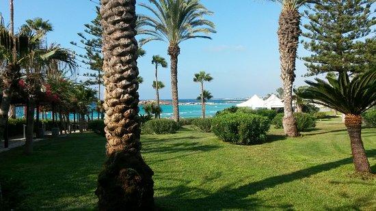 Nissi Beach Resort: 20160903_084654_large.jpg