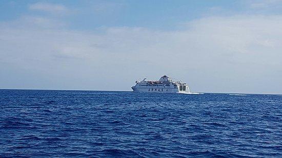 Velero Seaquestff