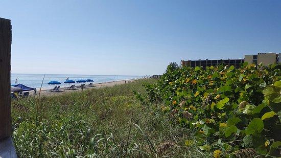 Vistana Beach Club: 20160904_101734_large.jpg