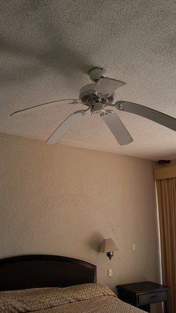 Droopy Ceiling Fan Didn T Work Picture Of Hotel Posada Del Mar Isla Mujeres Tripadvisor