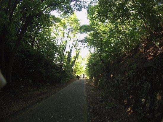 Pedalando Vai - Bike Rentals