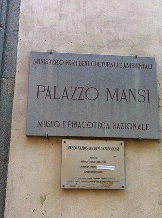 Museo Nazionale di Palazzo Mansi: Palazzo Mansi