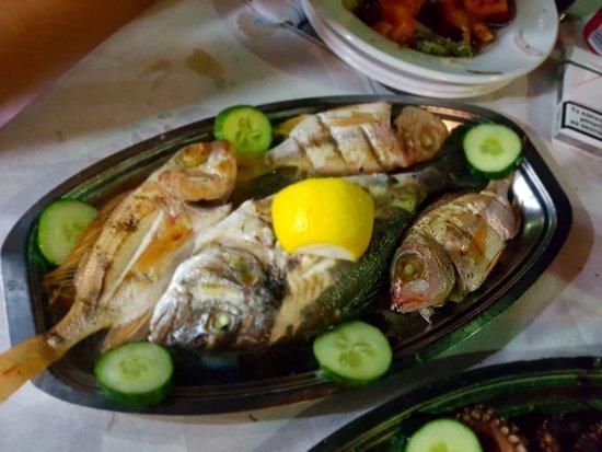 Trehantiri Taverna: διάφορα ψάρια 10€