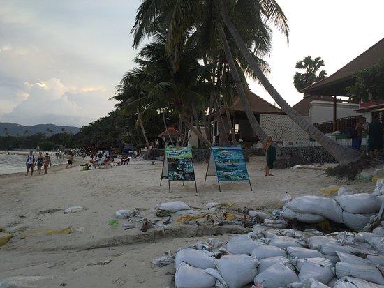 Η παραλία εξω απο το ξενοδοχείο.