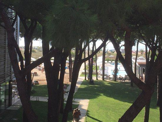 写真Hotel Mediterraneo枚