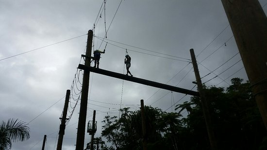 Kila Eco Adventure Park: Cat walk