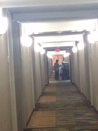 HILTON GARDEN INN BURLINGTON $111 ($̶1̶2̶0̶)   Updated 2018 Prices U0026 Hotel  Reviews   MA   TripAdvisor
