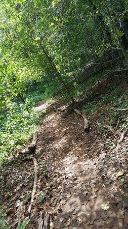 Tanglewood Park: 20160904_135756_large.jpg