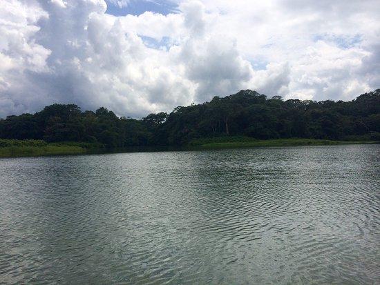 Gamboa Rainforest Resort Chagres River Boat Tour: photo4.jpg