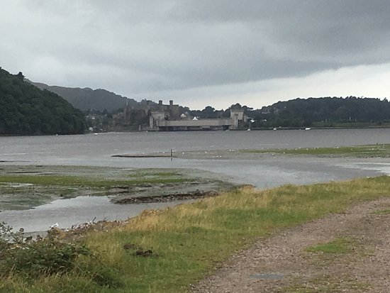 RSPB Conwy Nature Reserve : photo4.jpg