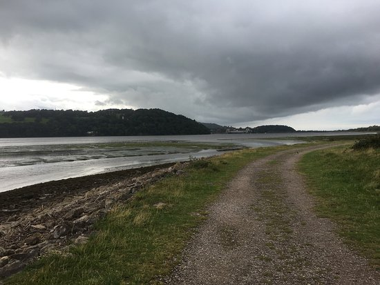 RSPB Conwy Nature Reserve : photo5.jpg