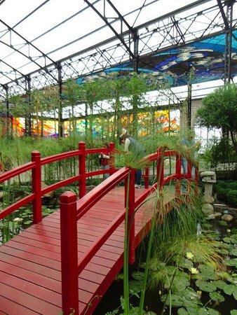 El cosmovitral cuenta con un peque o jard n japon s for Caracteristicas de un jardin botanico