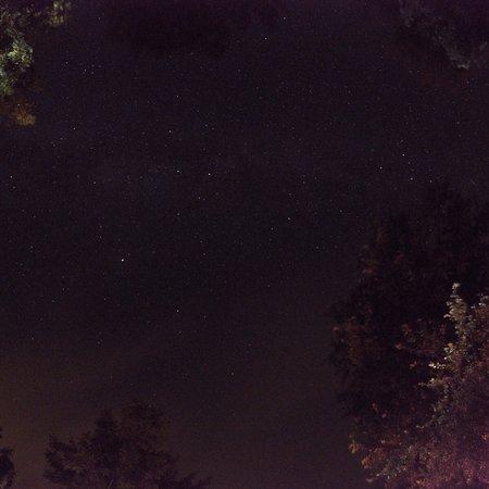Strawberry Skys Yurts: Ash yurt ❤️ amazing 2 nights break ❤️