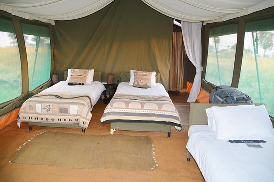 Chaka C& Our 3-bed Tent. & Our 3-bed Tent. - Picture of Chaka Camp Serengeti National Park ...