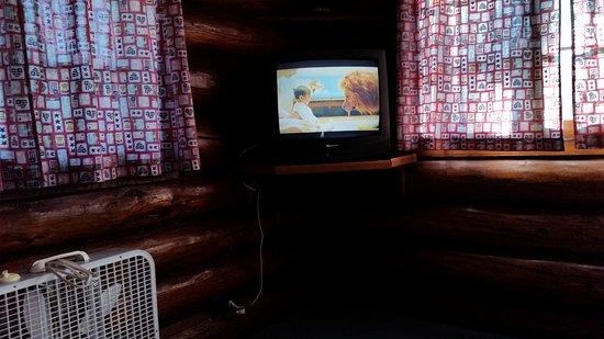 Tawas Inn &  Resort : Living room.