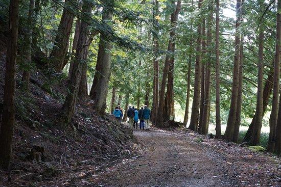 Остров Кортес, Канада: walking....
