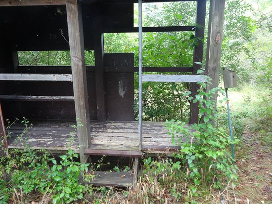 Mount Sterling, OH: The trails were good, but the wildlife blind is un-baited and neglected