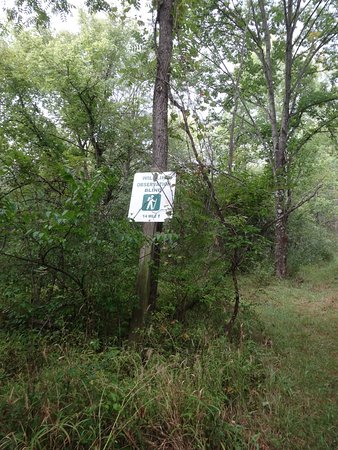 Mount Sterling, OH: Well marked trail in most places