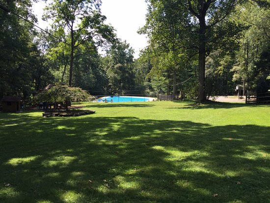 Ole Mink Farm Recreation Resort: Pool, kids playground, dog park area