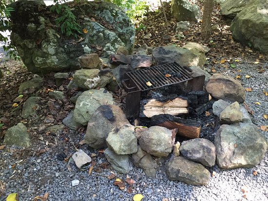 Ole Mink Farm Recreation Resort: Fire pit at the Sparrows Point cabinette