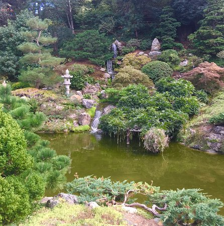 Hakone Gardens: photo2.jpg