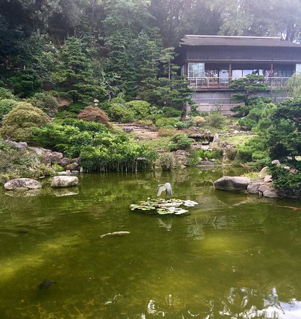 Hakone Gardens: photo4.jpg