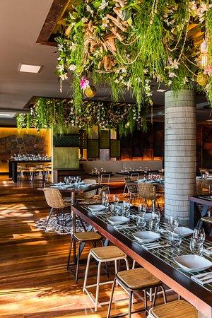 Sugarcane Restaurant Coogee