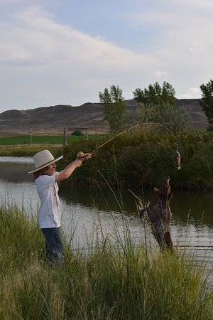 Clearmont, WY: fishing in the pond