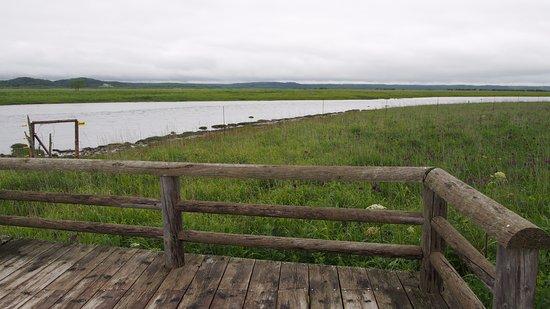 Kiritappu Wetland