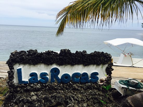 Las Rocas Resort & Dive Center: photo0.jpg