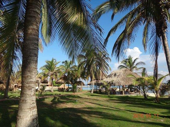 Punta Faro: photo1.jpg