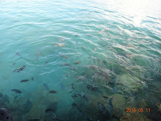 Punta Faro: photo2.jpg