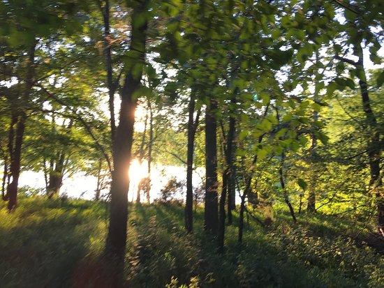 Radnor Lake State Park : photo3.jpg