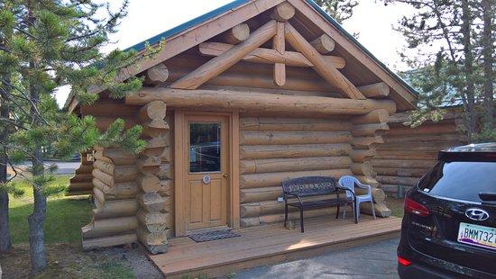 Hibernation Station Photo