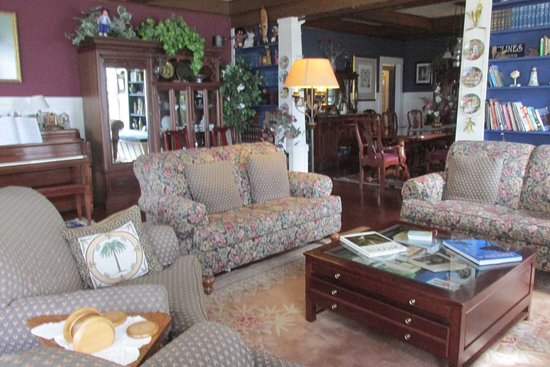 South Coast Inn Bed and Breakfast: The lounge