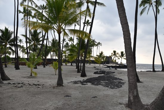 Honaunau, هاواي: きれいな砂と手入れされた公園