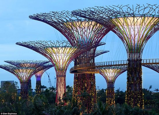 Genial Singapore Botanic Gardens: Singapore Botanical Gardens