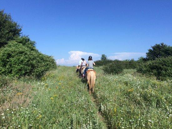 Agriturismo Il Cornacchino: on a horse trip