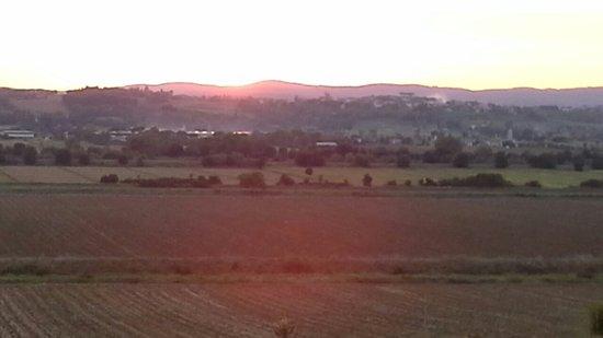 Castiglion Fiorentino, Italia: Agriturismo Il Belvedere