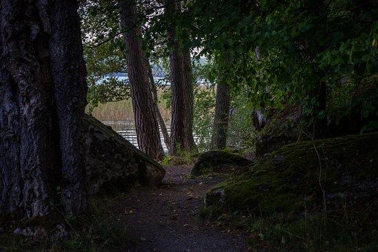 Rimforsa, Suecia: Hallstad ängar