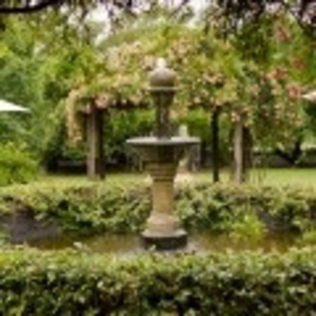 Morpeth, Australia: The garden