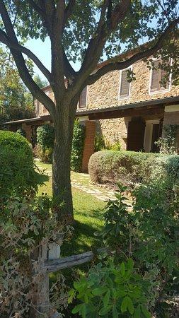 Agriturismo Serignano alle Rocchette : 20160829_143633_large.jpg