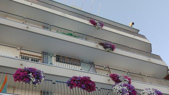 Hotel Sirenetta: flowers