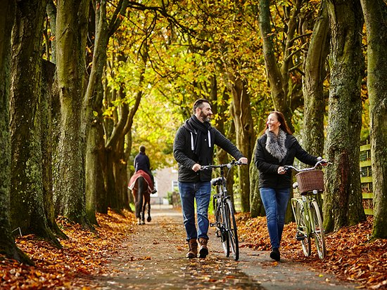 How do you want to feel? Cycle along Jersey's green lane network.