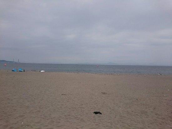 浴場 海水 三浦 海岸