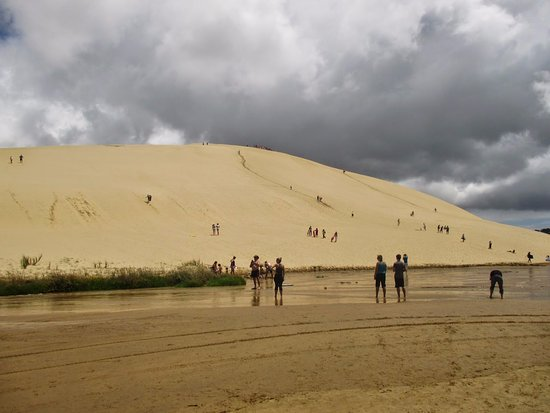 Pukenui, Новая Зеландия: sand surfing dalle dune di sabbia